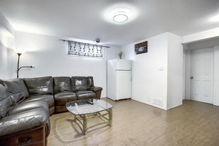 Photo 24: 47 Appleburn Close SE in Calgary: Applewood Park Detached for sale : MLS®# A1049300