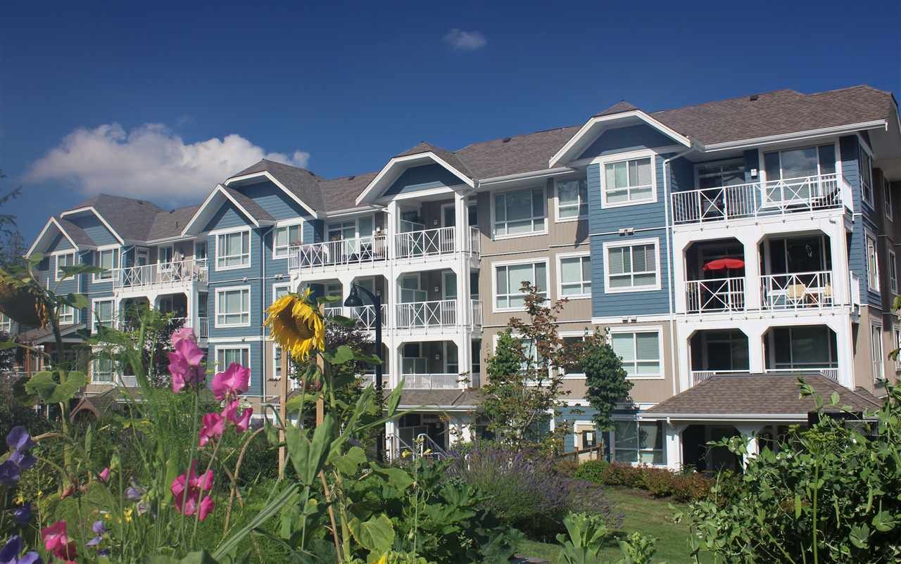 """Main Photo: 412 16398 64 Avenue in Surrey: Cloverdale BC Condo for sale in """"The Ridge at Bose Farms"""" (Cloverdale)  : MLS®# R2289381"""