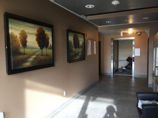 Photo 6: 405 8168 120A Street in Surrey: Queen Mary Park Surrey Condo for sale : MLS®# R2057416