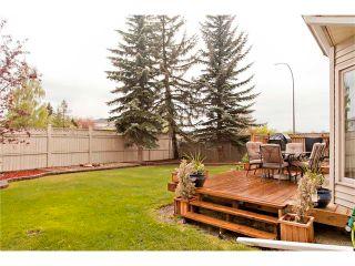 Photo 31: 114 DOUGLAS WOODS Court SE in Calgary: Douglasdale/Glen House for sale : MLS®# C4063831