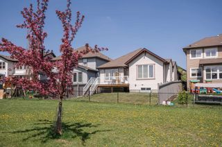 Photo 43: 740 HARDY Point in Edmonton: Zone 58 House for sale : MLS®# E4245565