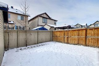 Photo 47: 458 Saddlelake Drive NE in Calgary: Saddle Ridge Detached for sale : MLS®# A1086829