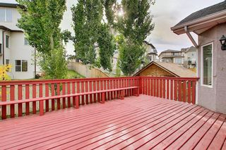 Photo 43: 11 SHERWOOD Grove NW in Calgary: Sherwood Detached for sale : MLS®# A1036541