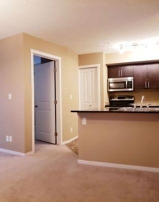 Photo 6: #313, 5804 Mullen Place in Edmonton: Zone 14 Condo for sale : MLS®# E4253705