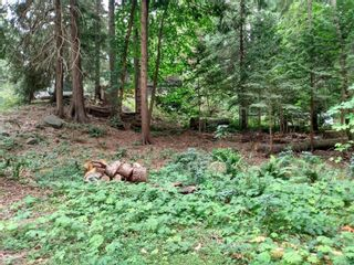 Photo 11: 99 Pirates Lane in : Isl Protection Island Land for sale (Islands)  : MLS®# 882311