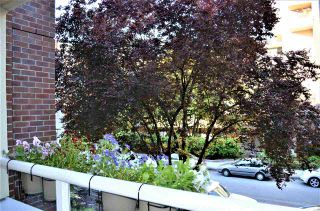 Photo 12: 202 1230 HARO STREET in Vancouver: West End VW Condo for sale (Vancouver West)  : MLS®# R2463124