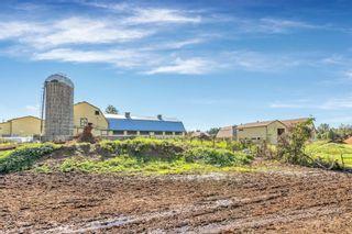 "Photo 24: 12591 209 Street in Maple Ridge: Northwest Maple Ridge Agri-Business for sale in ""HAMPTON FARMS"" : MLS®# C8040444"