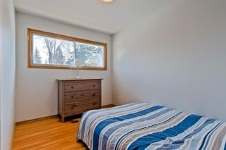 Photo 17: 105 Langton Drive SW in Calgary: North Glenmore Park Detached for sale : MLS®# A1066568