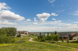 Photo 45: 157 Springbluff Boulevard SW in Calgary: Springbank Hill Detached for sale : MLS®# A1129724
