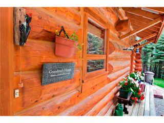 Photo 21: 2 Doyle Drive: Sundre House for sale : MLS®# C4022571