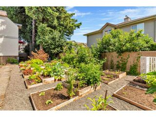 """Photo 38: 8 9446 HAZEL Street in Chilliwack: Chilliwack E Young-Yale Townhouse for sale in """"Delong Gardens"""" : MLS®# R2475378"""