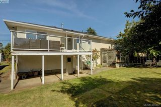 Photo 17: 1615 Sheridan Ave in VICTORIA: SE Mt Tolmie House for sale (Saanich East)  : MLS®# 802020