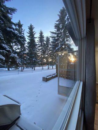 Photo 26:  in Edmonton: Zone 29 Condo for sale : MLS®# E4228174