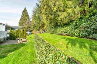 Photo 36: 3046 MCMILLAN Road in Abbotsford: Abbotsford East House for sale : MLS®# R2560396