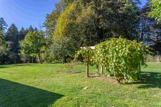 Photo 39: 9537 MANZER Street in Mission: Mission BC House for sale : MLS®# R2552296