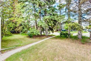 Photo 5: 1401 19 Avenue NW in Calgary: Capitol Hill Detached for sale : MLS®# A1119819