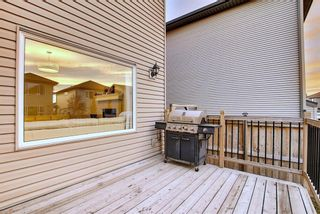 Photo 21: 1100 Brightoncrest Green SE in Calgary: New Brighton Detached for sale : MLS®# A1060195