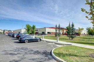 Photo 33: 115 Everhollow Street SW in Calgary: Evergreen Detached for sale : MLS®# A1145858