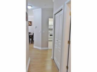 Photo 7: 332 1185 PACIFIC Street in COQUITLAM: North Coquitlam Condo for sale (Coquitlam)  : MLS®# V1019628