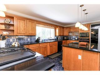 Photo 10: 21980 100TH Avenue in Langley: Fort Langley House for sale : MLS®# F1448299