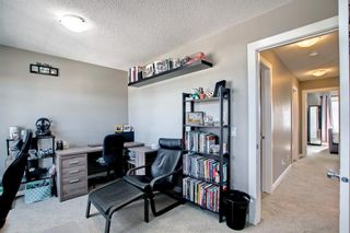 Photo 41: 180 Evanspark Gardens NW in Calgary: Evanston Detached for sale : MLS®# A1144783