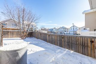 Photo 36: 85 Evansmeade Circle NW in Calgary: Evanston Detached for sale : MLS®# A1067552