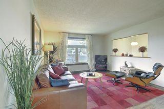 Photo 11: 108 Fallswater Road NE in Calgary: Falconridge Detached for sale : MLS®# A1133695