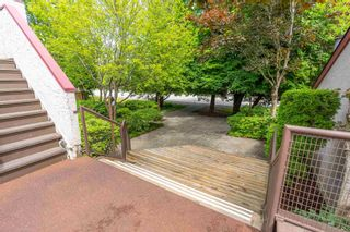 """Photo 29: 31 7540 ABERCROMBIE Drive in Richmond: Brighouse South Townhouse for sale in """"NEWPORT TERRACE"""" : MLS®# R2593819"""