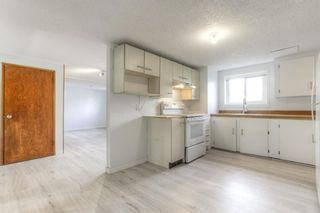 Photo 19: 2526 17 Street NW in Calgary: Capitol Hill Detached for sale : MLS®# A1100233