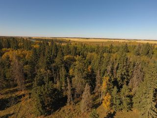 Photo 7: ON Township Road 355A: Rural Red Deer County Land for sale : MLS®# A1039276