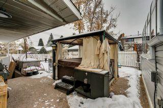 Photo 38: 275 Parkland Crescent SE in Calgary: Parkland Detached for sale : MLS®# A1064121