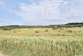 Photo 11: RM 486 5 Quarter Land in Moose Range: Farm for sale (Moose Range Rm No. 486)  : MLS®# SK867716
