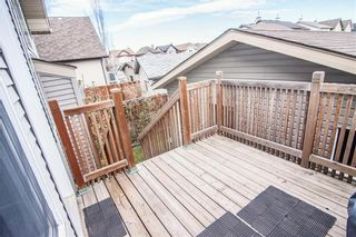 Photo 30: 259 CRANBERRY Place SE in Calgary: Cranston Detached for sale : MLS®# C4214402