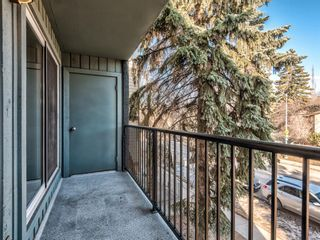Photo 28: 202 1603 26 Avenue SW in Calgary: South Calgary Apartment for sale : MLS®# A1100163