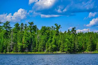 Photo 6: lot 2 Five Point Island in South of Kenora: Vacant Land for sale : MLS®# TB212084