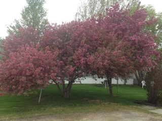 Photo 40: 36 VERNON KEATS Drive in St Clements: Pineridge Trailer Park Residential for sale (R02)  : MLS®# 202014656