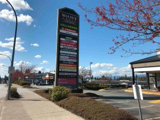 "Photo 28: 28 9036 208 Street in Langley: Walnut Grove Townhouse for sale in ""Walnut Grove"" : MLS®# R2563116"