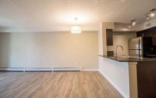 Photo 13: 215 1060 McConachie Boulevard in Edmonton: Zone 03 Condo for sale : MLS®# E4257715