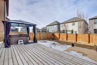 Photo 47: 117 Windgate Close: Airdrie Detached for sale : MLS®# A1084566