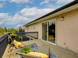 Photo 38: 3908 Lianne Pl in : SW Strawberry Vale House for sale (Saanich West)  : MLS®# 875878