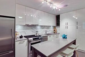 Photo 9: 203 231 E Pender Street in Vancouver: Downtown VE Condo for sale (Vancouver East)