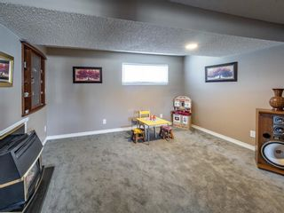 Photo 18: 223 Tanner Drive SE: Airdrie Detached for sale : MLS®# A1101335