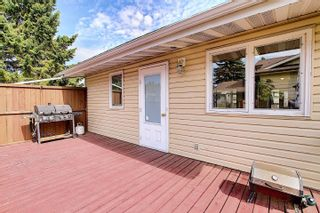 Photo 44: 4911 52 Avenue: Redwater House for sale : MLS®# E4260591