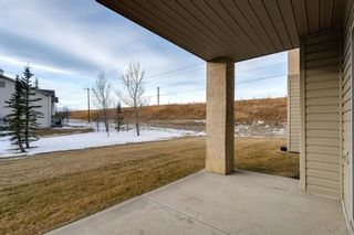 Photo 19: 107 3000 Citadel Meadow Point NW in Calgary: Citadel Apartment for sale : MLS®# A1070603