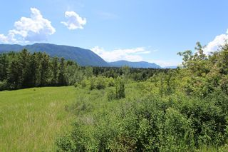 Photo 8: 37 2481 Squilax Anglemont Road in Lee Creek: North Shuswap Land Only for sale (Shuswap)  : MLS®# 10094382