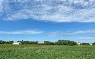 Photo 12:  in Killarney: Agriculture for sale : MLS®# 202116569