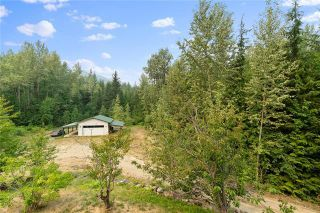 Photo 46: 3745 Cameron Road, in Eagle Bay: House for sale : MLS®# 10238169