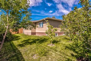 Photo 49: 8248 4A Street SW in Calgary: Kingsland Detached for sale : MLS®# A1142251