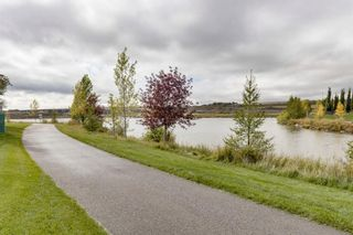 Photo 40: 885 Canoe Green SW: Airdrie Detached for sale : MLS®# A1146428