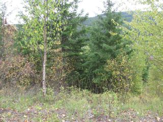 Photo 29: 80 Acres Creighton Valley Road, in Lumby: Vacant Land for sale : MLS®# 10239894